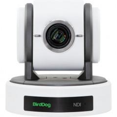 BirdDog Eyes P100 Kamera PTD 1080p Full NDI (biała)