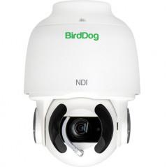 BirdDog Eyes A200 Kamera PTZ 1080p Full NDI (biała)