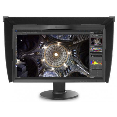 "Eizo ColorEdge CG248-4K monitor LCD z matrycą 24"" (CG248-4K)"