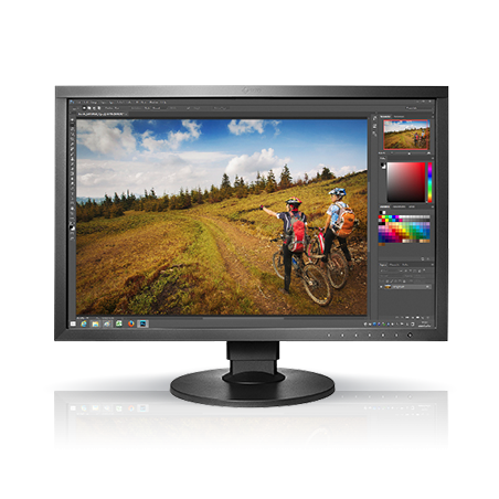 "Eizo ColorEdge CS2420 monitor LCD z matrycą 24"" (CS2420-BK)"