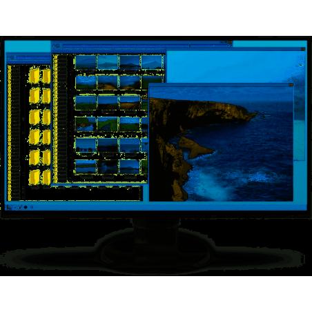 "Eizo FlexScan EV2456 monitor LCD z matrycą 24"" (EV2456-WT)"